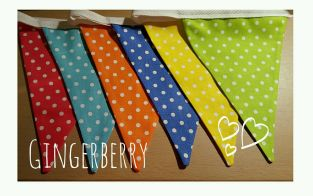 bright-gingerberry-short